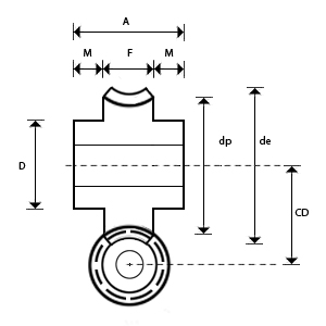 Bronze Worm Wheel