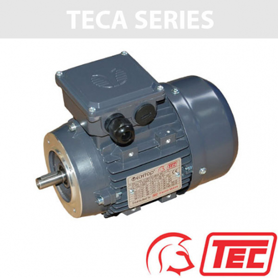 TEC IE2 Rated 3 Phase 0.75kw 2840rpm (2Pole) D80 (801-2) Frame B14 Flange Mounted Electric Motor