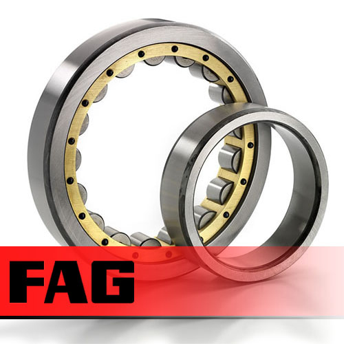 NU1056M1 FAG Cylindrical Roller Bearing 280x420x65mm