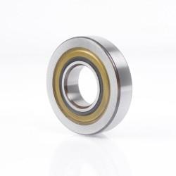 RAE60-NPP INA Self Lube 60x110x53.1mm