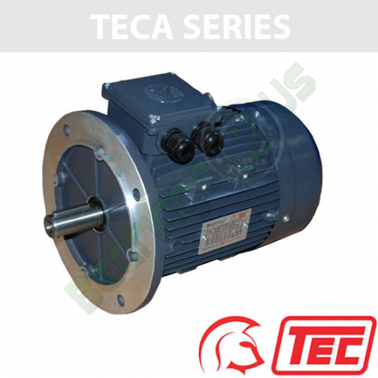 TEC IE2 Rated 3 Phase 2.2kw 1440rpm (4Pole) D100L1 Frame B5 Flange Mounted Electric Motor
